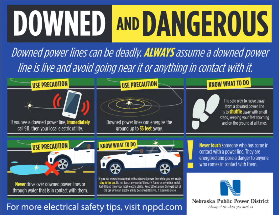 Steps on what to do if you encounter a downed power line