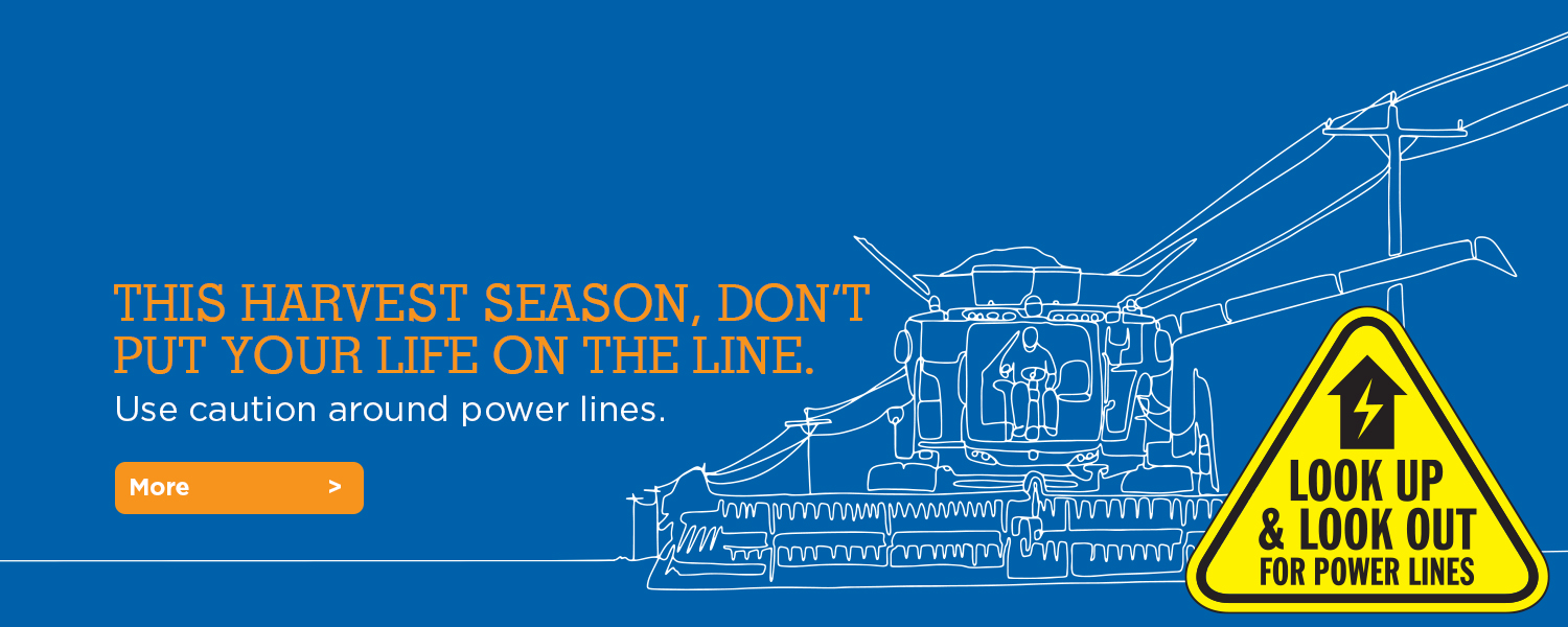 Look up. Look out. Safety around overhead power lines.
