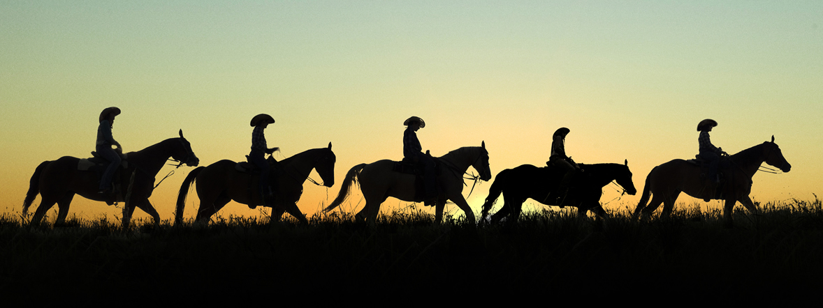 Immerse yourself in nature on the Cowboy Trail