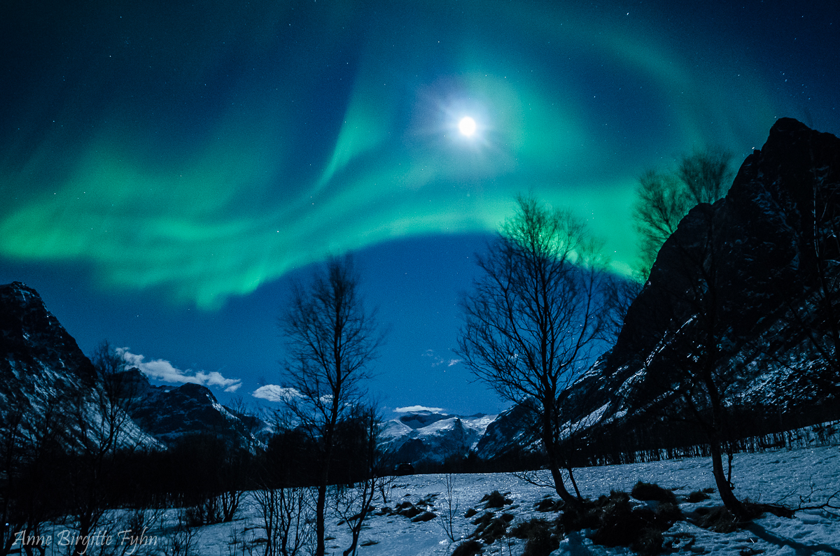 Northern Light photography near Tromso