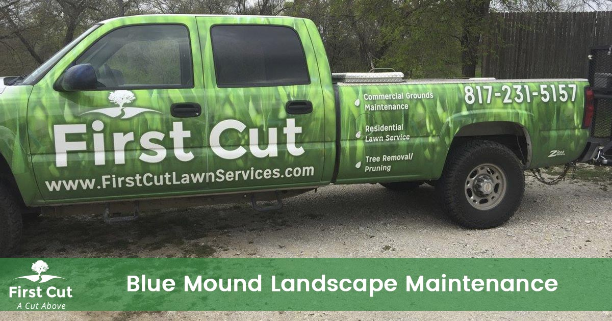 Bush Trimming Service in Blue Mound Texas