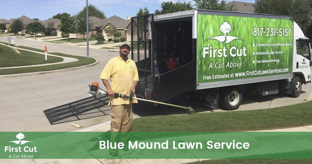 Lawn Service in Blue Mound Texas