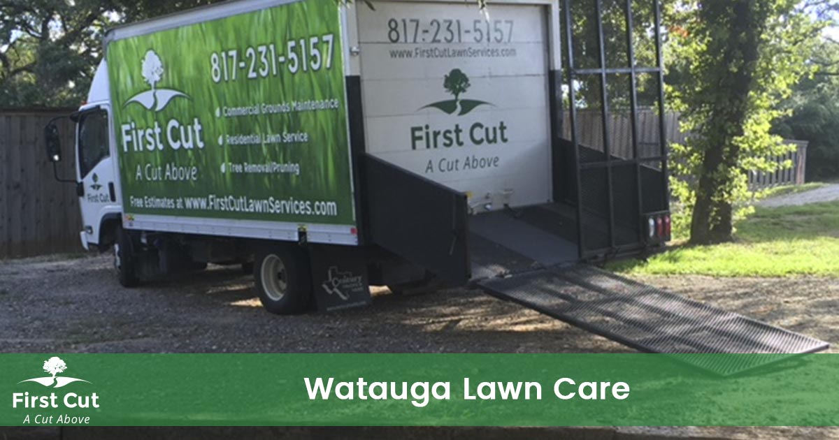 Lawn Care Service in Watauga Texas