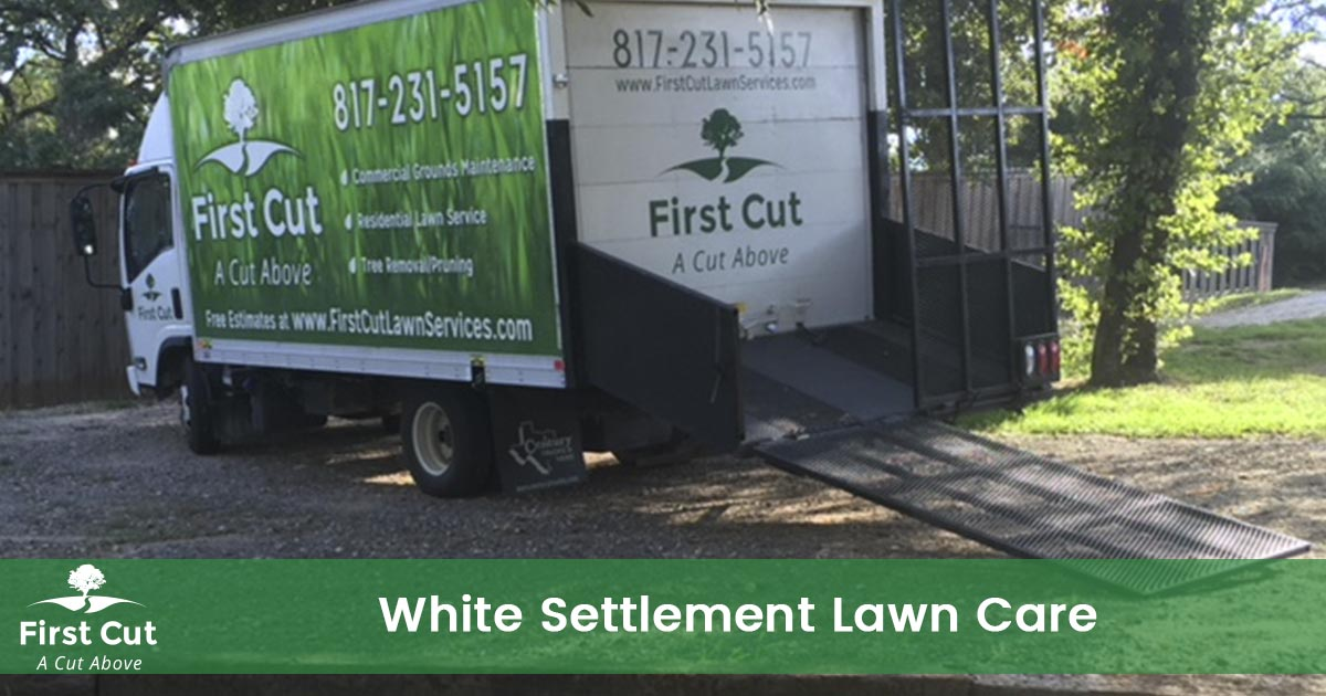 Lawn Care Service in White Settlement Texas