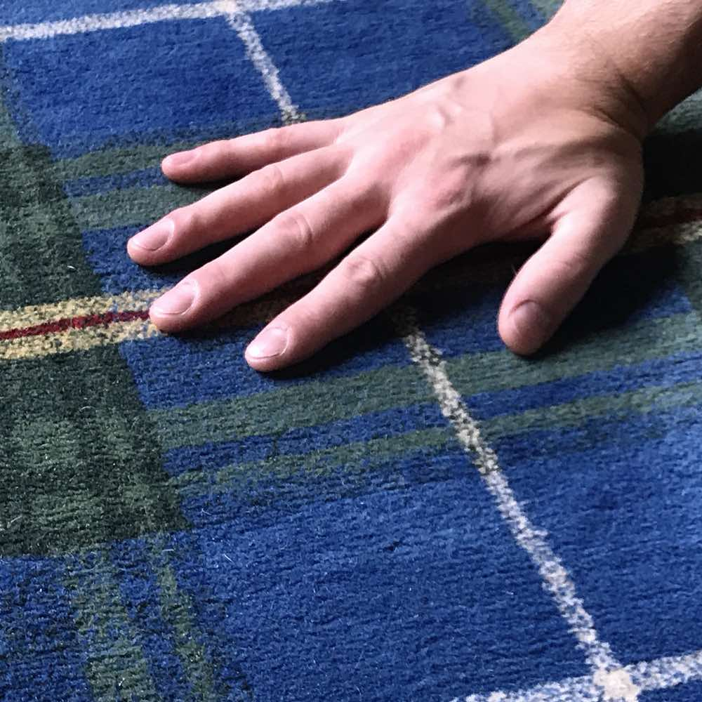 Your rug dye will be carefully evaluated before cleaning