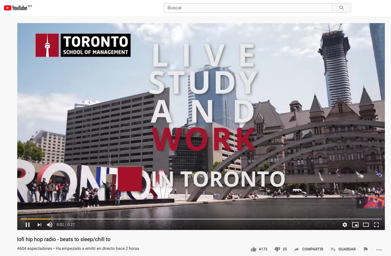 Ejemplo de campaña de vídeo en Google Adwords