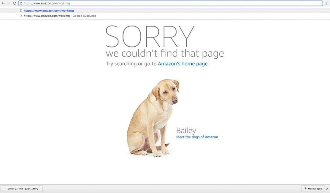Página de error 404 de Amazon en una landing page