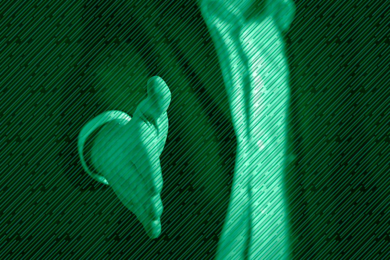 CRM de Ventas, el aliado para generar leads nuevos