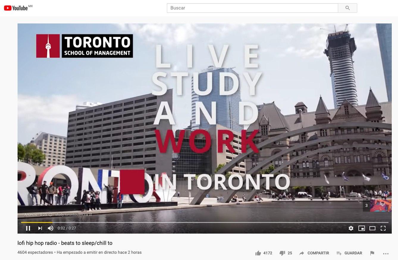 Ejemplo de campaña de vídeo en Google Adwords.