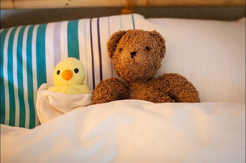 Teddy and duck