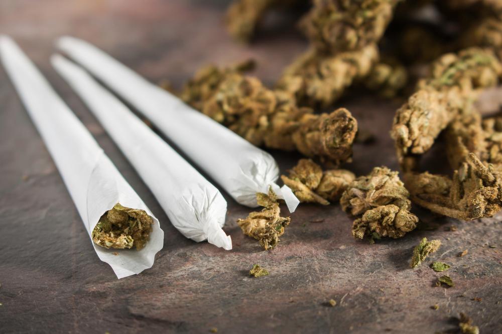 marijuana rolled into joint