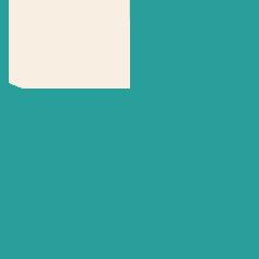 81% icon