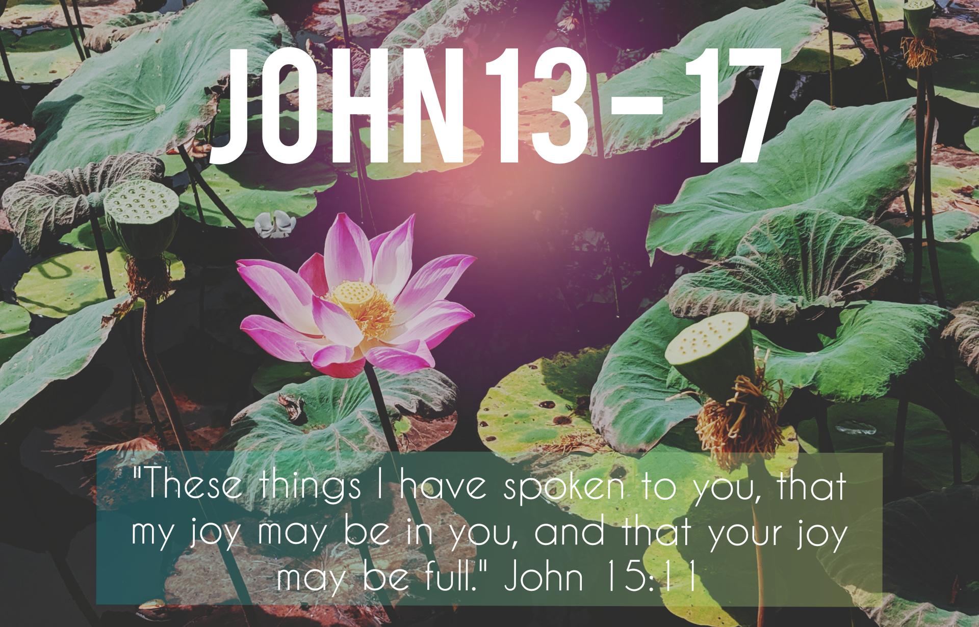 John 13 - 17