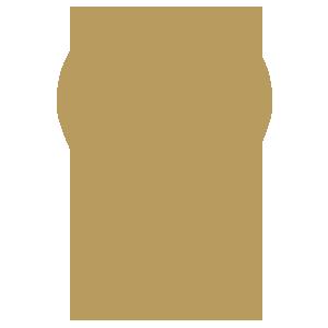 icon local