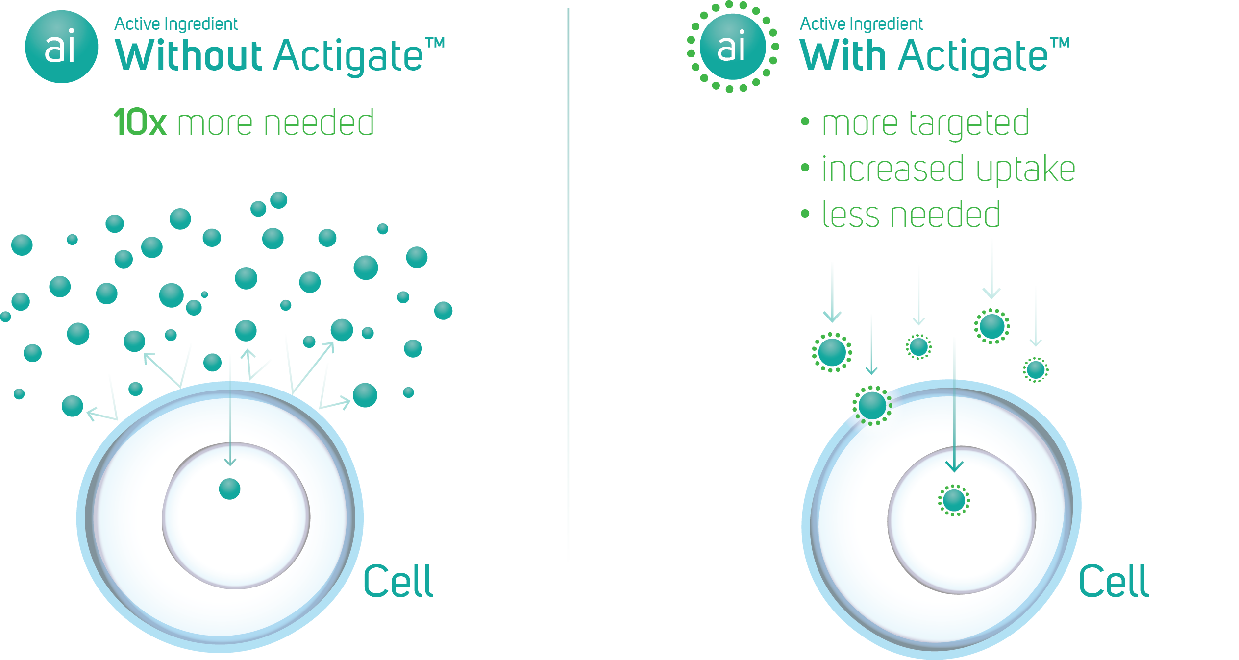 ore targeted, increased uptake and less needed with Actigate