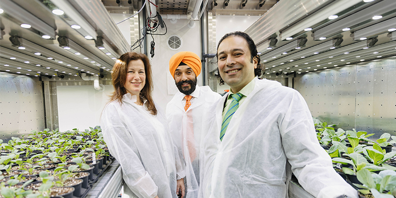 Terramera®, the Vancouver-based agtech leader fusing science, nature and artificial intelligence to transform how food is grown and the economics of agriculture, today announced that it is leading a significant project for the Canadian Digital Technology Supercluster.