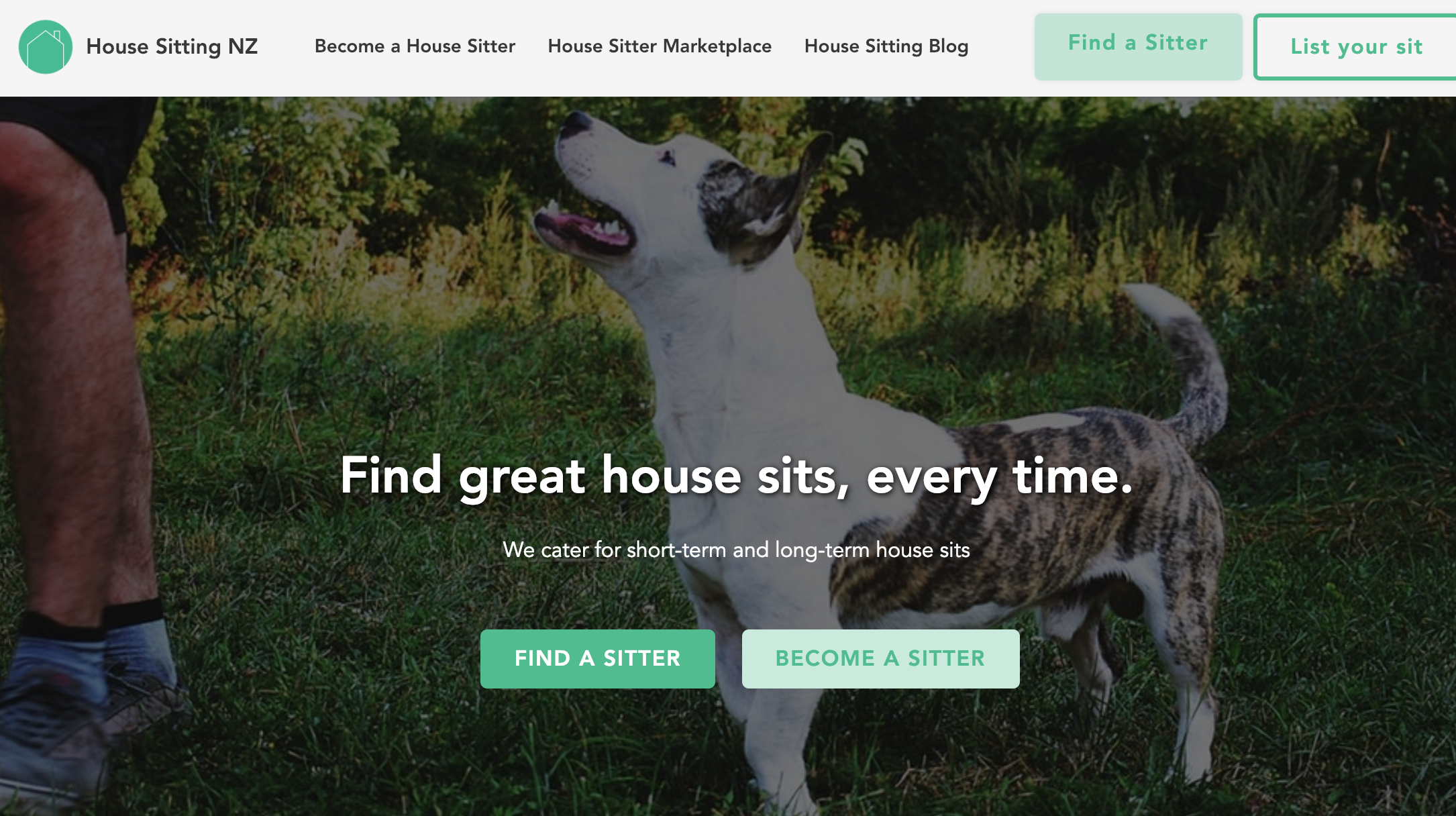 House Sitting NZ by Connor Finlayson | Unicorn Factory