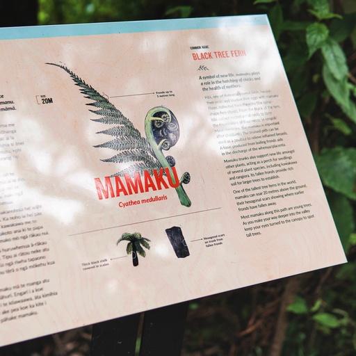 Zealandia Ecosanctuary - Illustration Designer