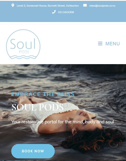 Soul Pods for Pixel and Ink  - Copywriter, Web Designer