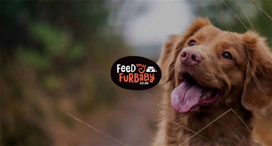 Feed My Furbaby NZ - Nikki Gibbons