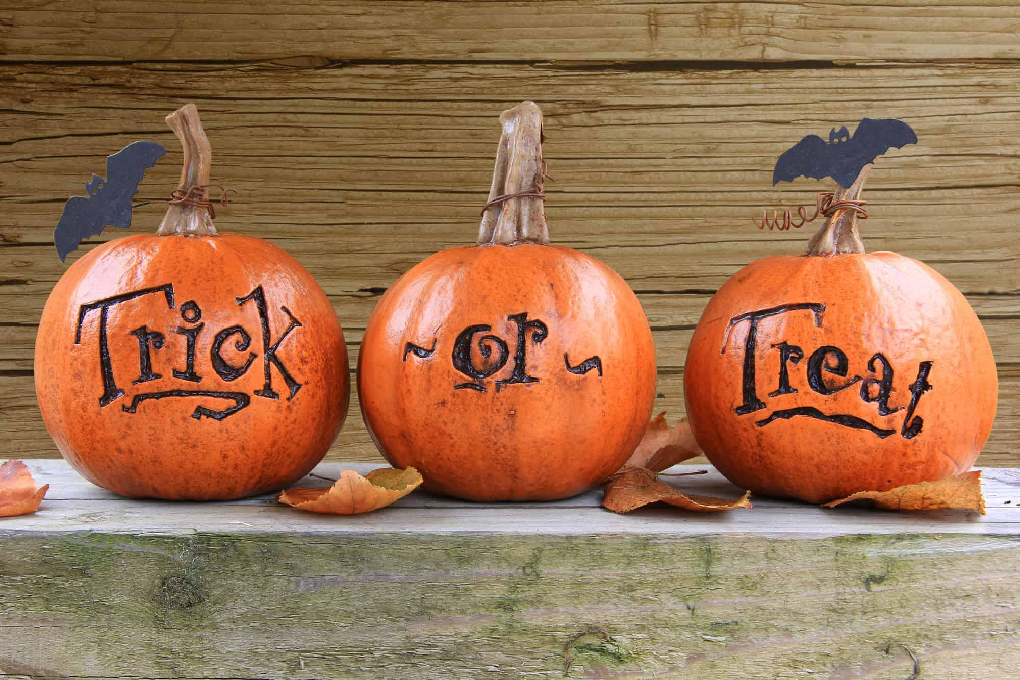 pumpkins that say trick or treat