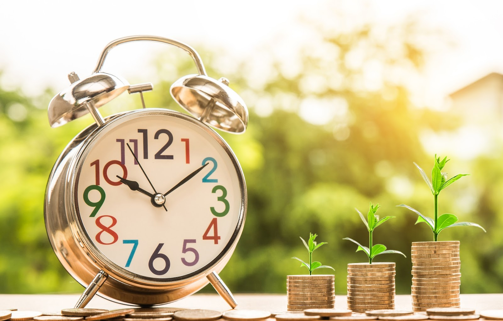 clock and coins with leaf growing