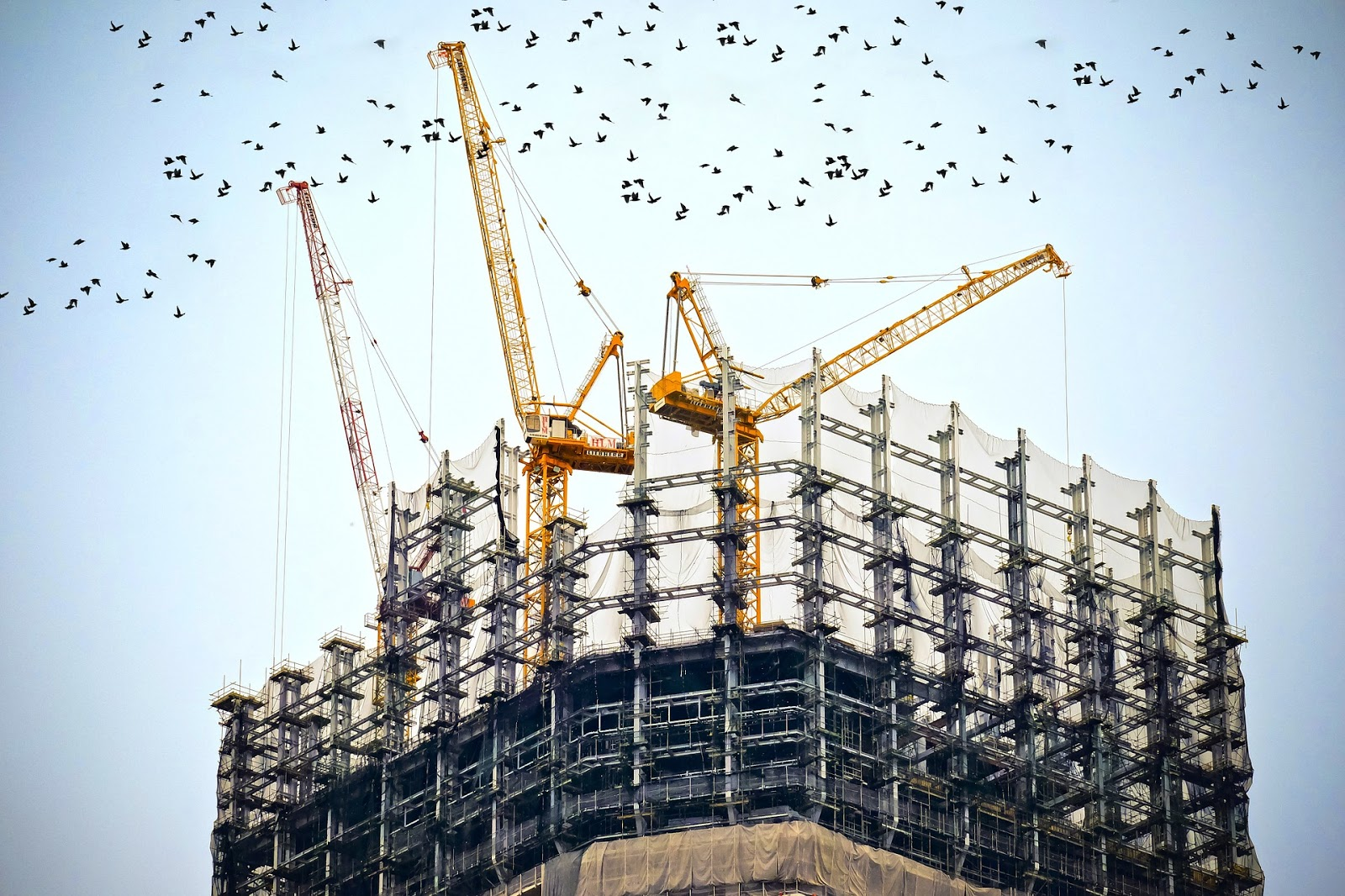 on going construction with cranes