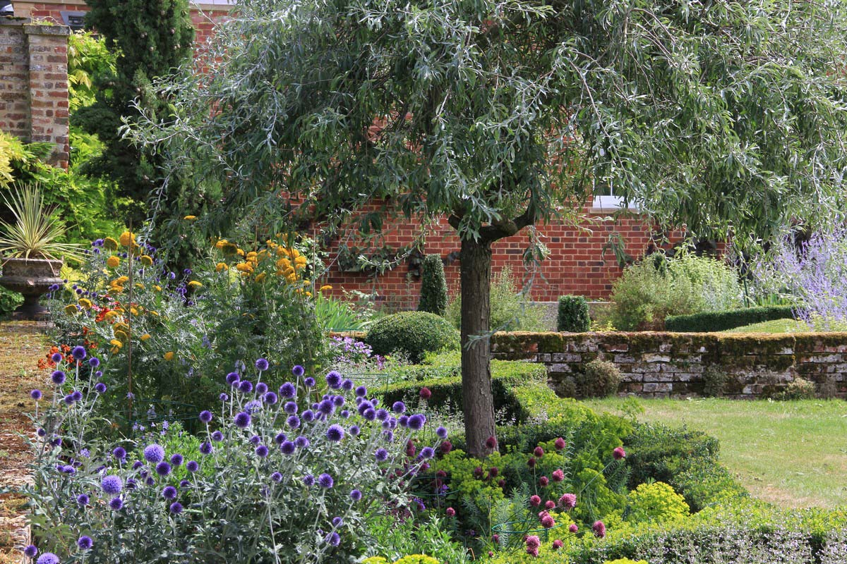 Tessa Hobbs - Old Hall Garden - Garden and Design
