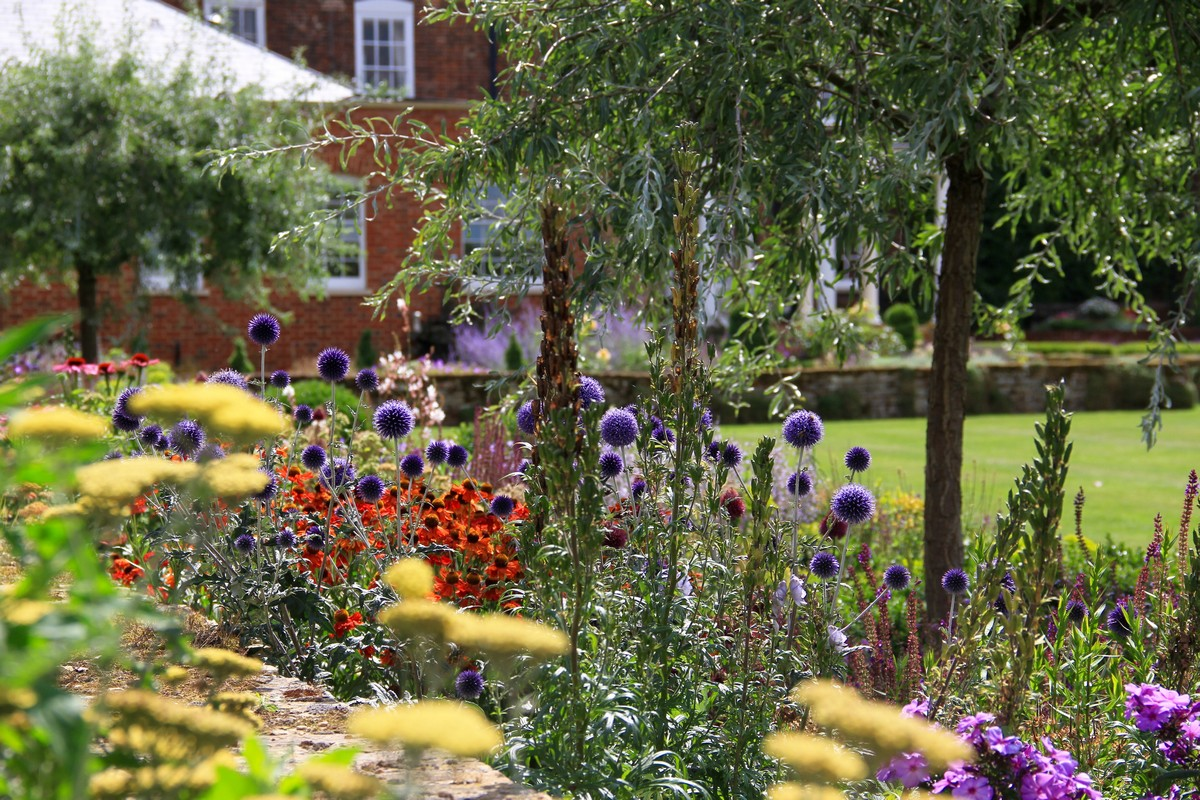 Tessa Hobbs - Cornucopia Garden - Garden and Design