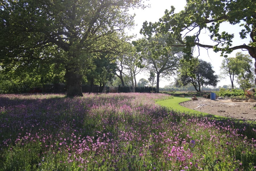 Tessa Hobbs - Landscape Gardens and Surrounds for Suffolk Farmhouse