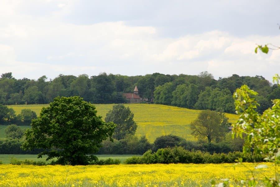 Tessa Hobbs - Landscape Gardens and Surrounds for Meesden Hall