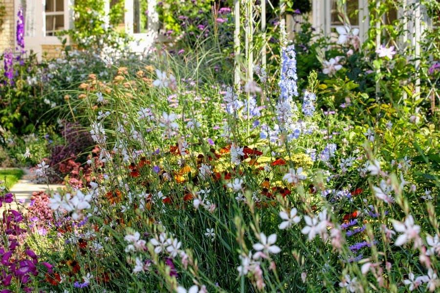 Tessa Hobbs - Landscape Gardens and Surrounds featuring stunning flower displays
