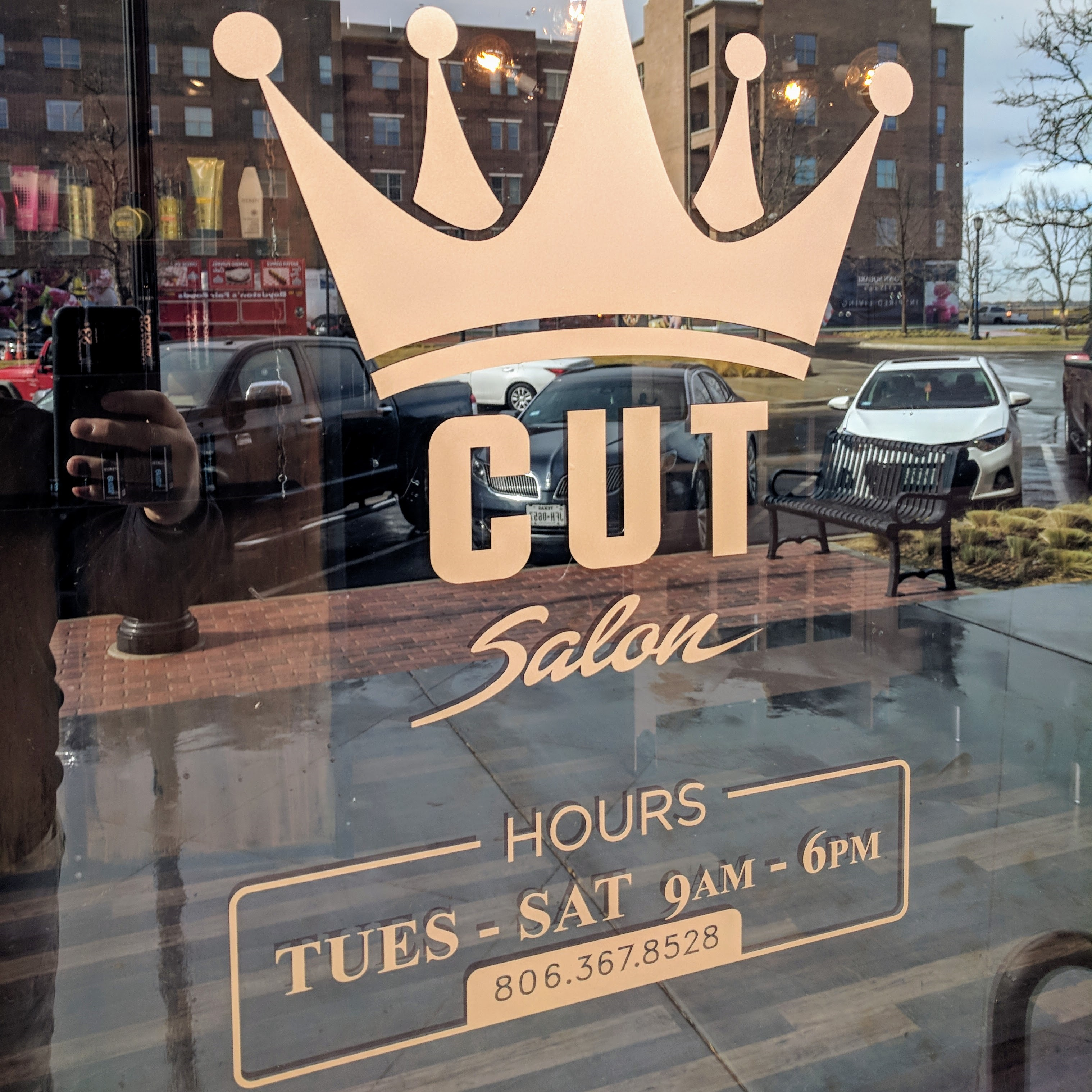 Window decals made of cut vinyl
