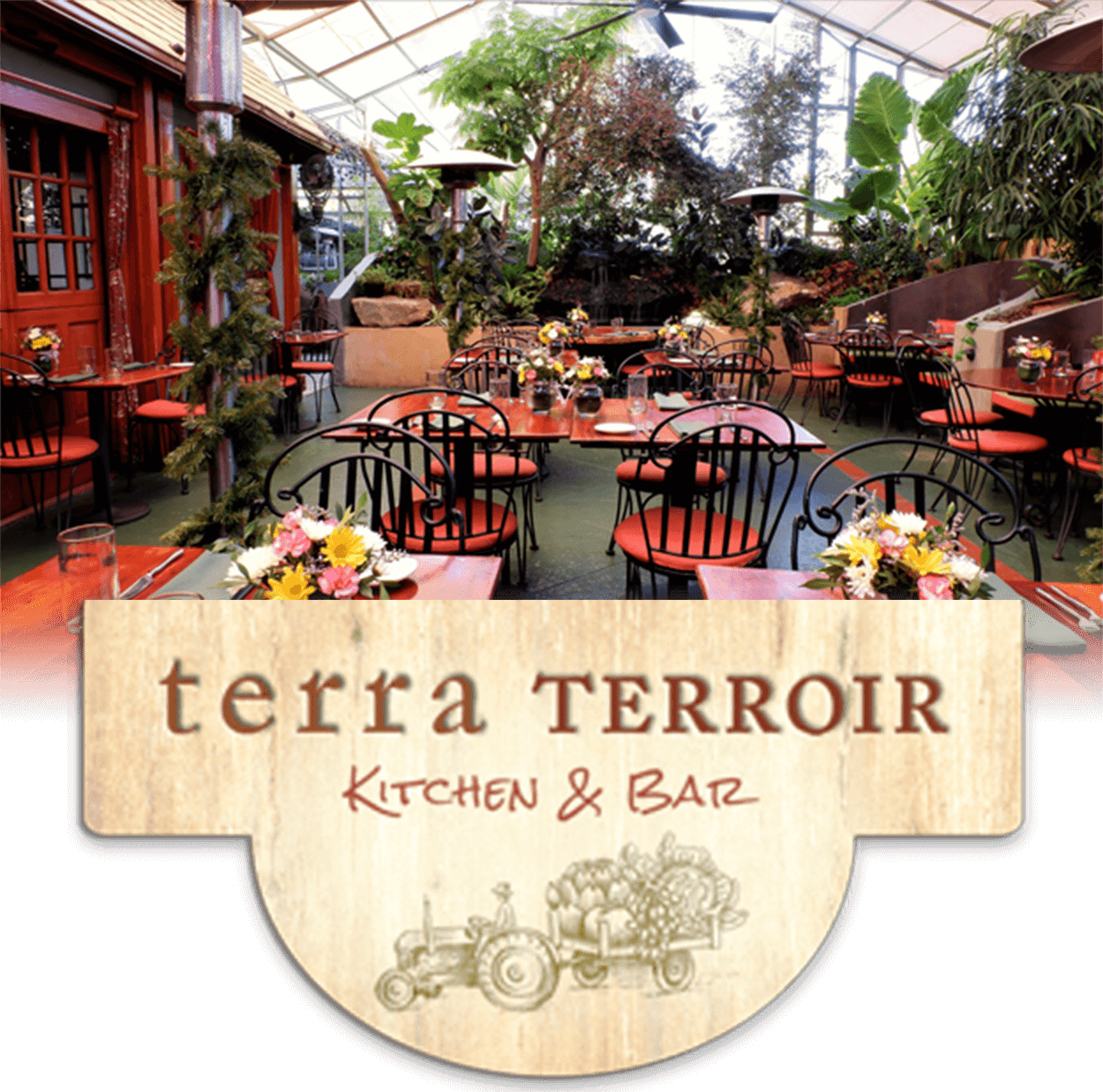 Interior and Logo Terra Terroir
