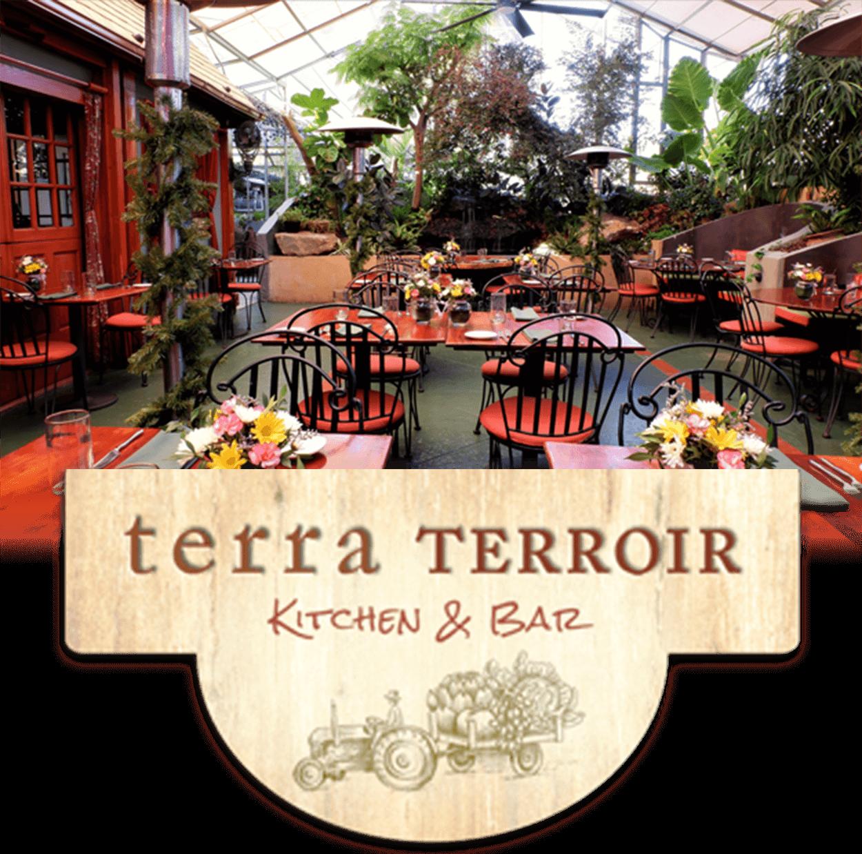 Interior and Logo Terra Terroir