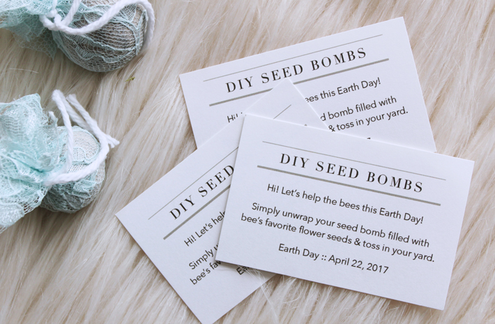 Thnlife Diy Earth Day Seed Bombs Jessica Carey
