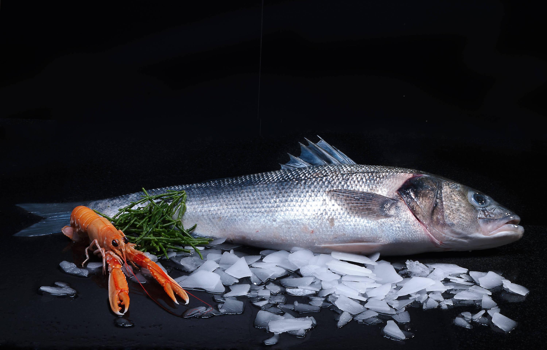Wild Sea Bass, Samphire, Langoustine