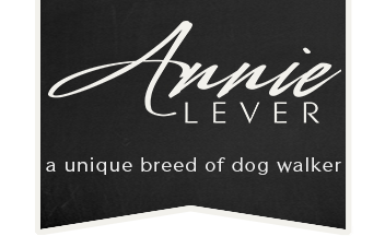 Annie Lever: A Unique Breed of Dog Walker