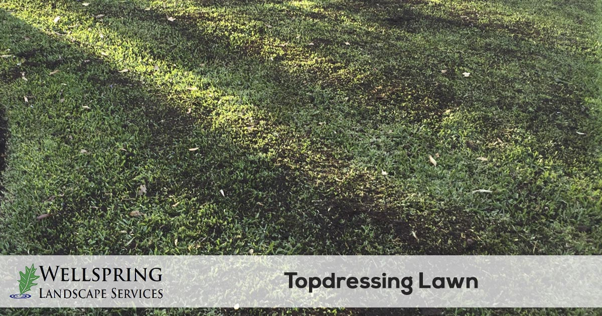 6393f17cf0 Lawn Top Dressing Service | Wellspring Landscape Services