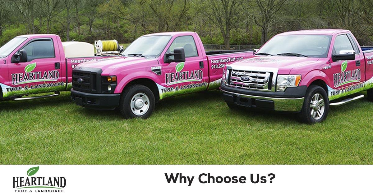 Choose a lawn care company