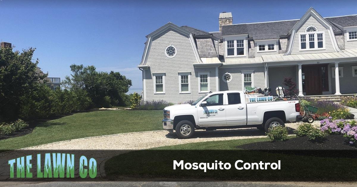 Mosquito control service in Cape Cod