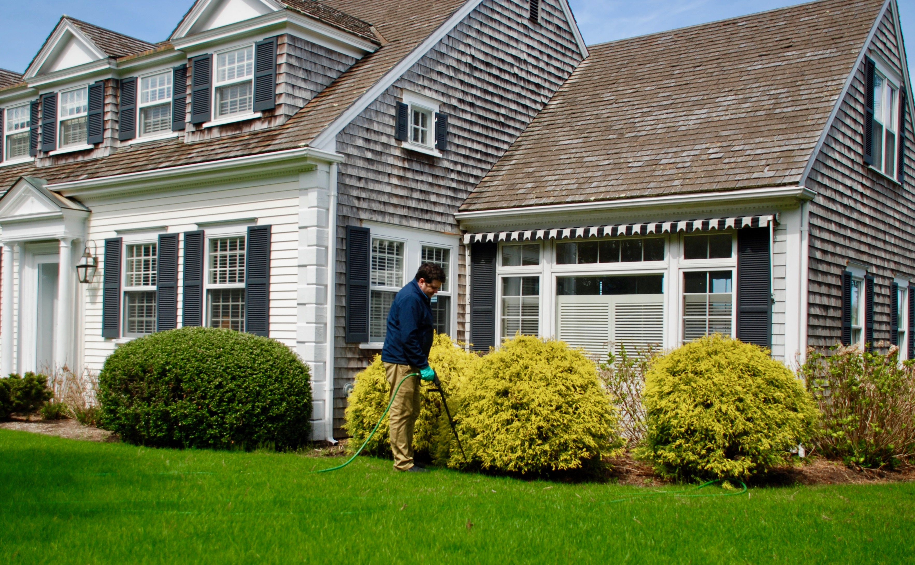 Tree and Shrub care in Cape Cod
