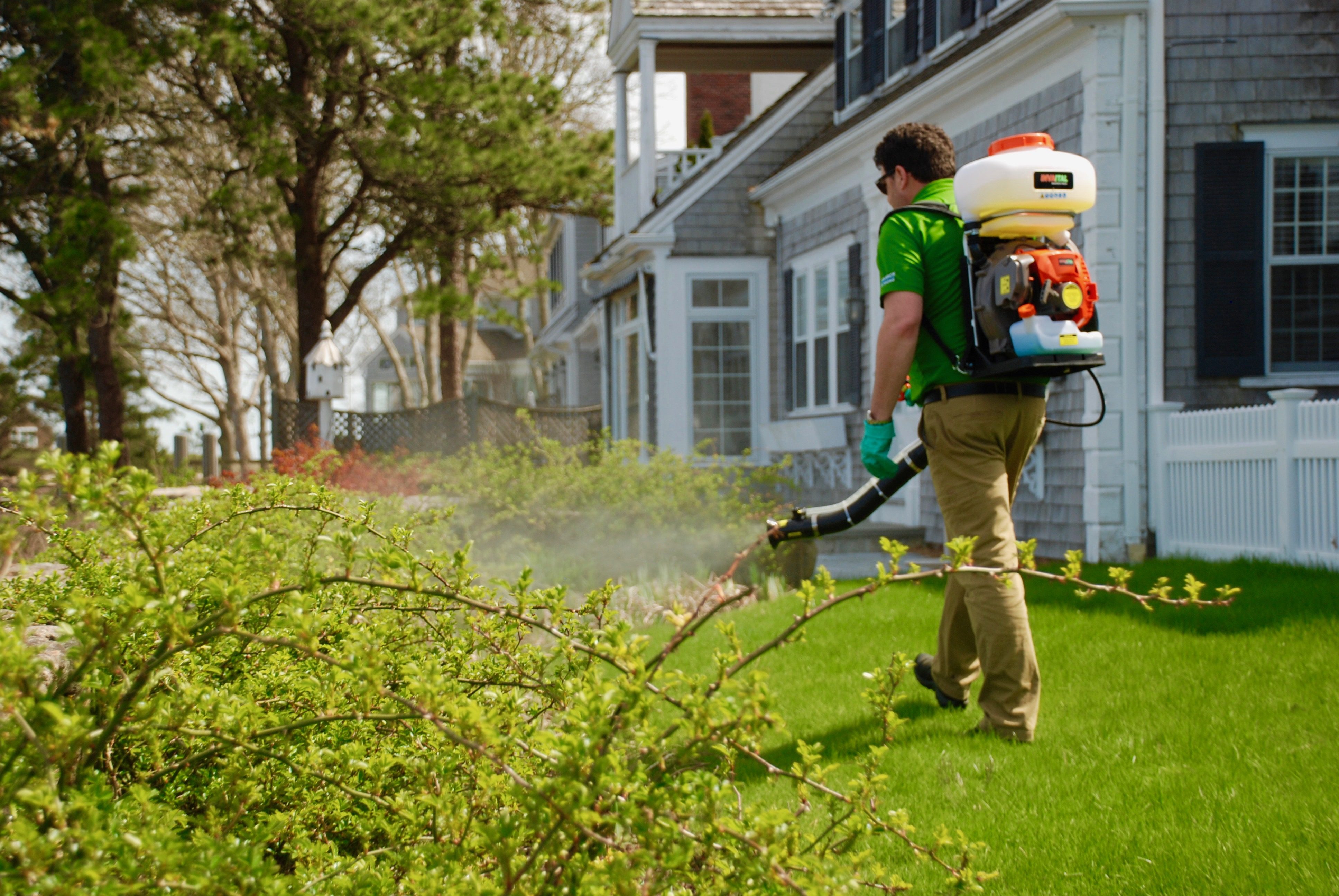 Outdoor pest control service in Cape Cod