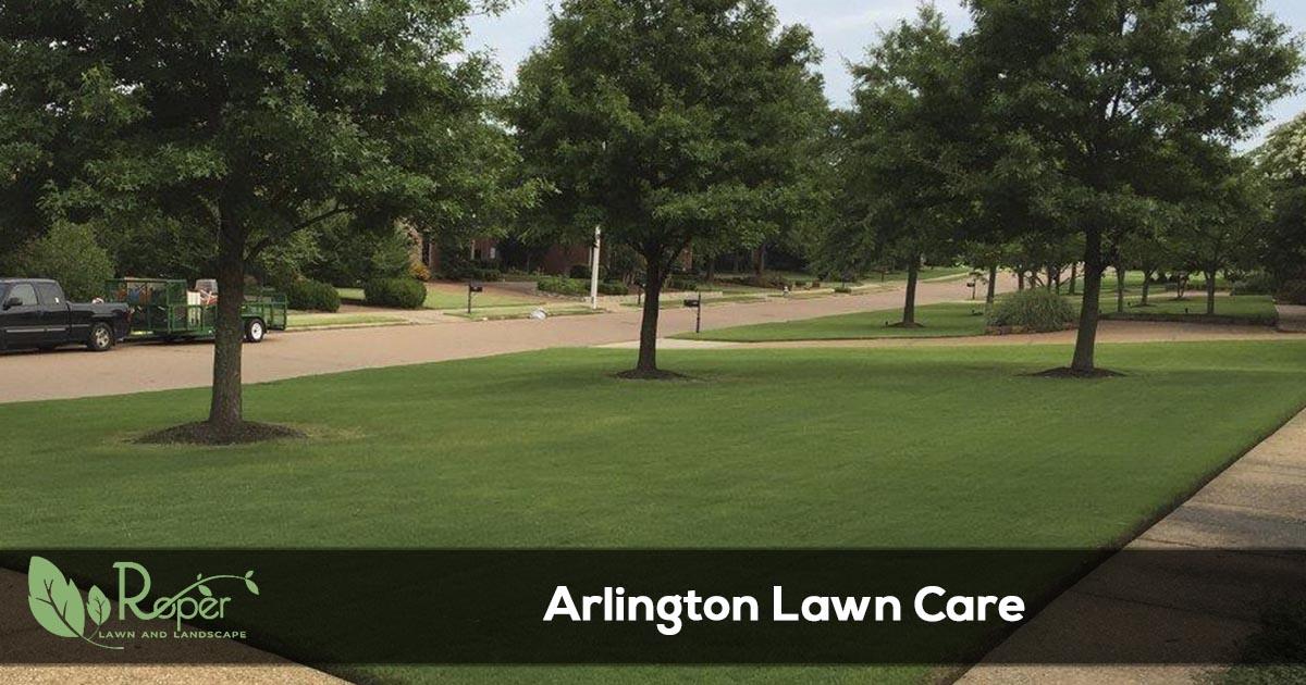 Arlington Lawn Care & Landscaping Service