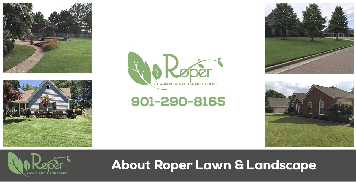 About Roper Lawn & Landscape in Memphis TN