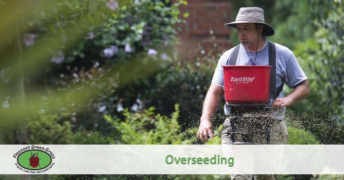 Overseeding