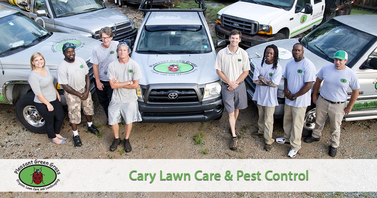 Cary Lawn Service