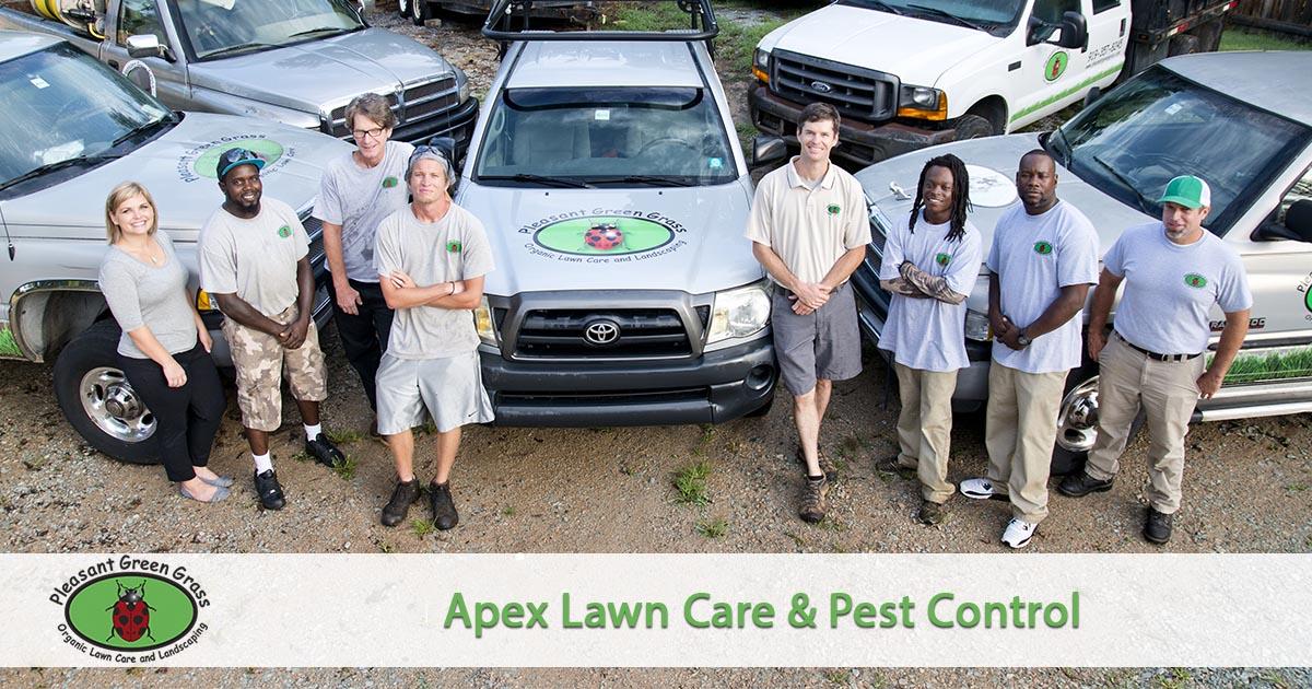 Apex Lawn Service