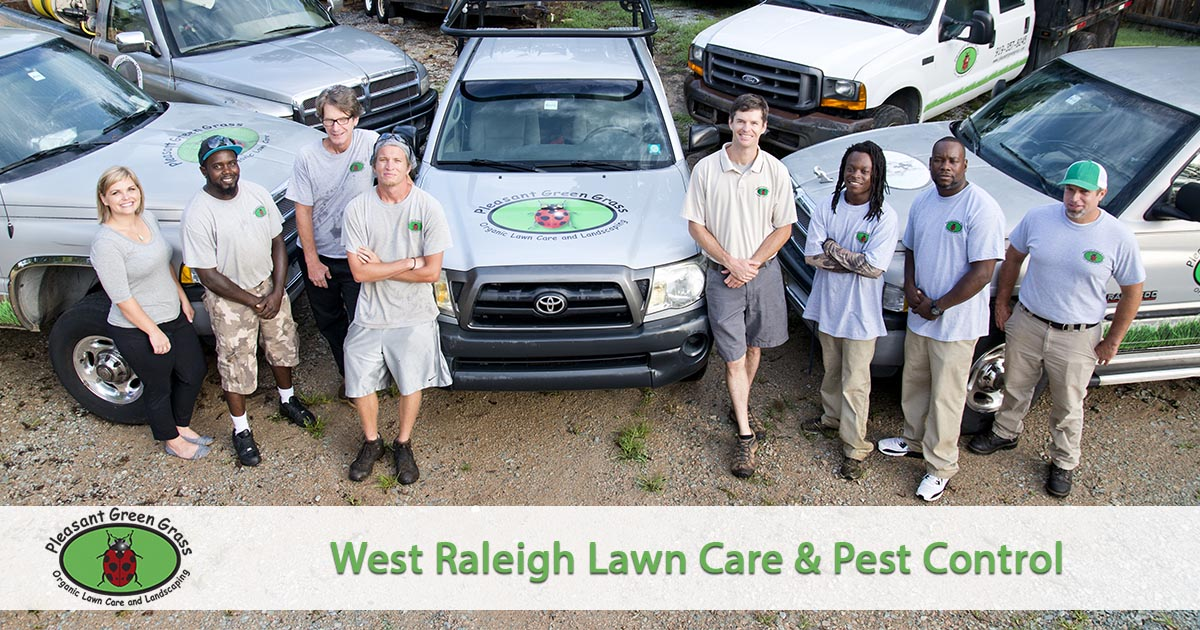West Raleigh Lawn Service