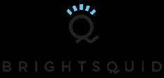 Brightsquid Icon